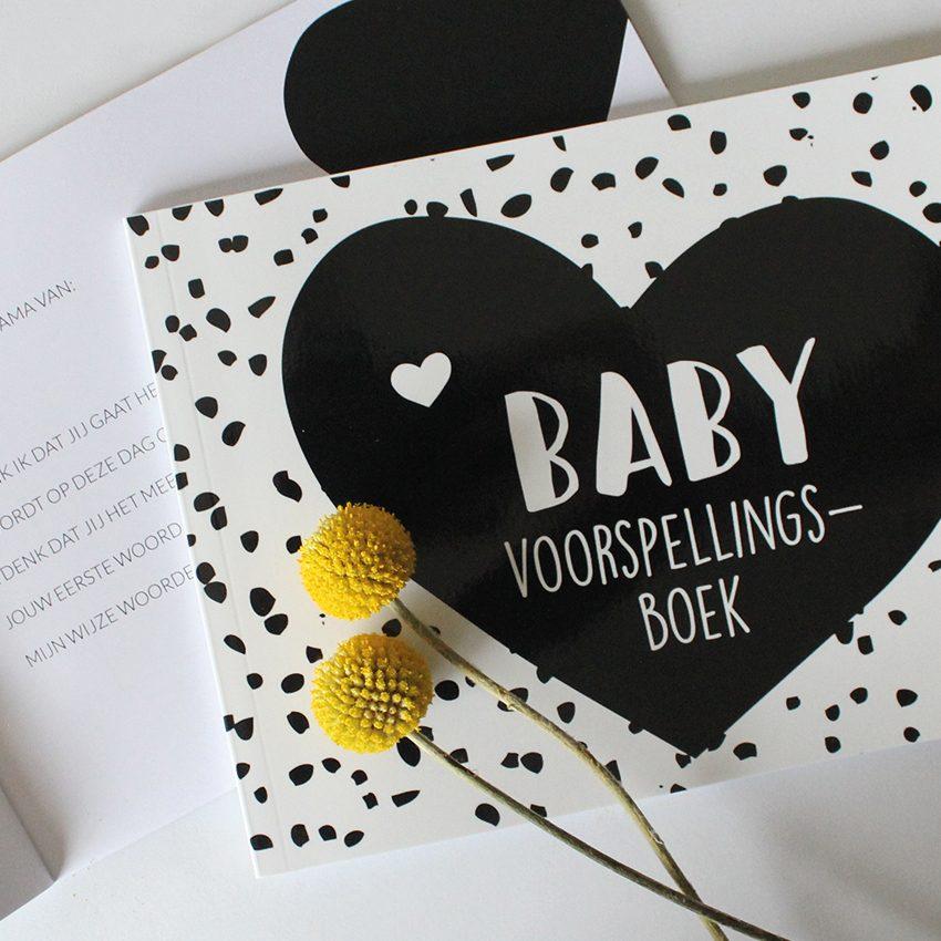 Hebbers baby voorspellingsboek