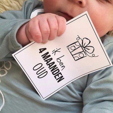 Baby momenten kaartjes milestone kaartjes Hebbers