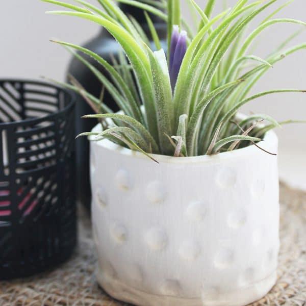Je eigen planten potje maken met klei